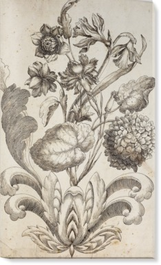 Venetian Floral