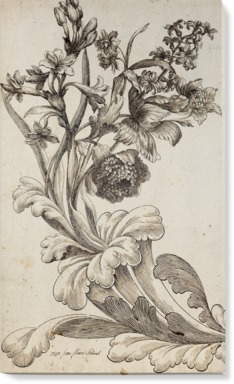 Venetian Floral III