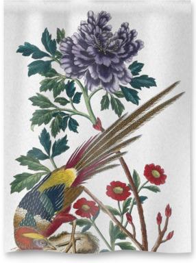La Pivoine en Arbre à fleurs violettes