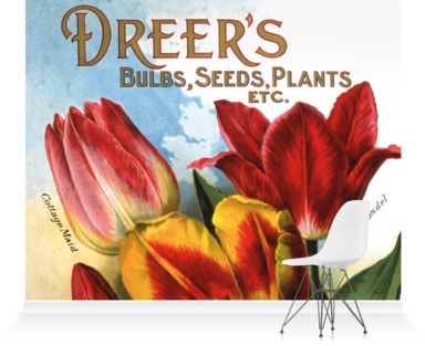 Dreer's Bulbs