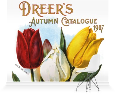 Dreer's Autumn Catalogue