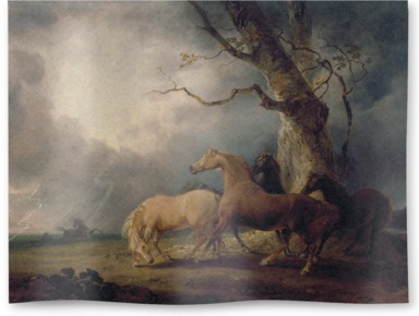 Horses in a Thunderstorm