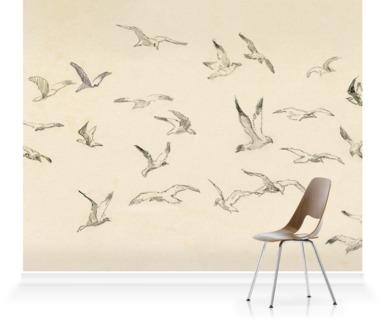 Studies of Birds