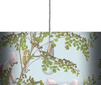 Magnolia - Sky