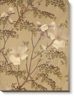 Magnolia - Caramel