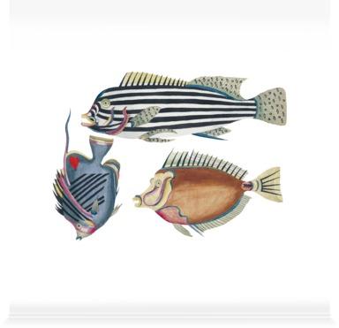 Poissons, Ecrevisses et Crabes 3
