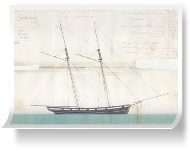 Rig and the sail profile plan for 'Nightingale'