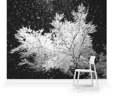 Winter Waiting