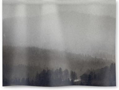 Rich Fog