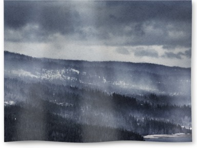 Winter Forest Fog