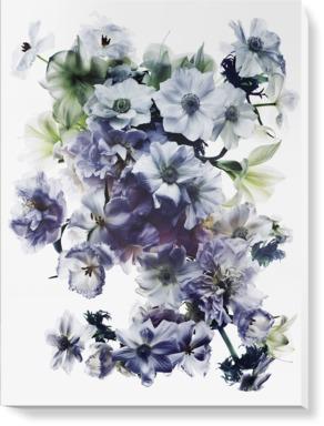 Purple in Bloom