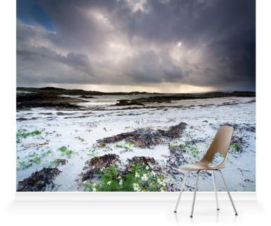 Silver Sands of Morar, Mallaig, Scotland II