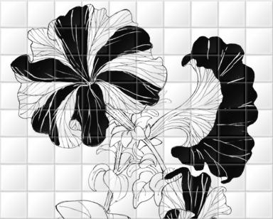 Petunia Hybrida