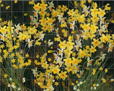 Welsh Daffodils - Anthracite
