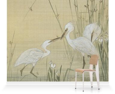 Egrets Amongst Weeds
