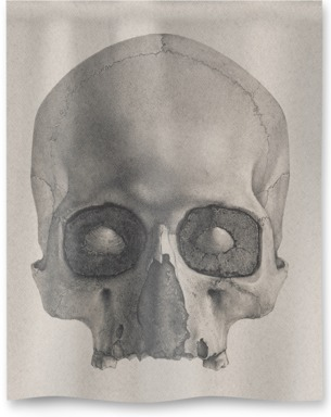 Engraving of a Human Skull
