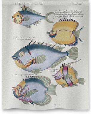 Poissons, Ecrevisses et Crabes 4