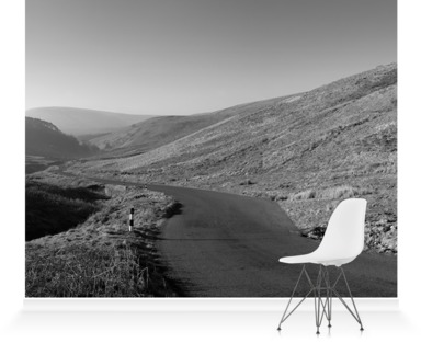 Trough of Bowland B&W