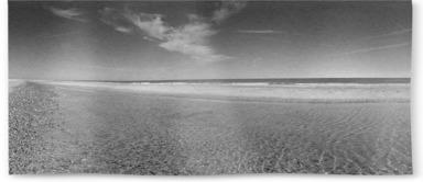 High Summer on Winterton Beach B&W