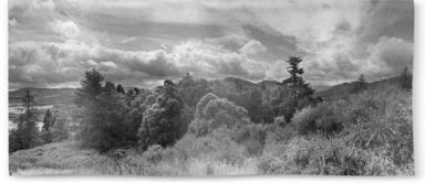 Ochil Hills B&W