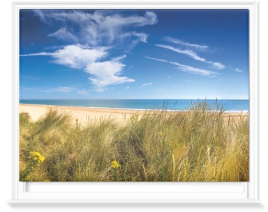 Marram Grass Dunes And Beach