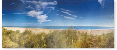 Marram Grass Dunes And Beach