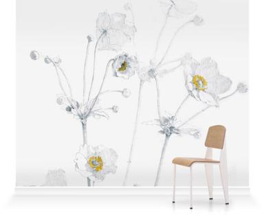 Anemone hupehensis 'Honorine Joubert'