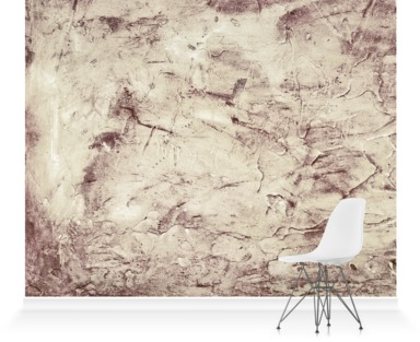 Earth plaster wall