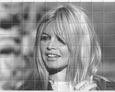 Photo of Brigitte Bardot