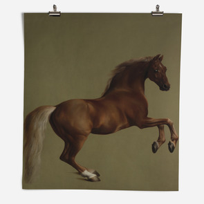 'Whistlejacket'