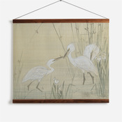 'Egrets Amongst Weeds'