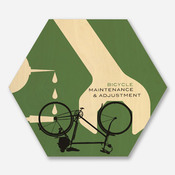 'Bicycle Maintenance and Adjustment'