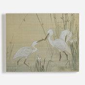 'Egrets Amongst Weeds'