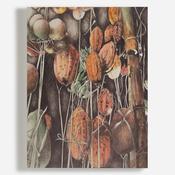 'Malaysian Fruits'