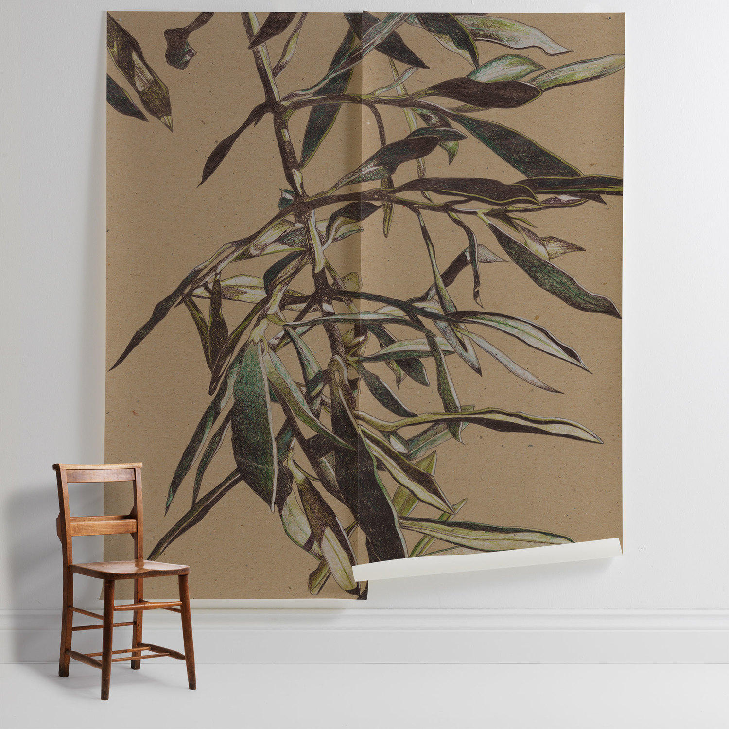 Olive Tree Leaves Surfaceview