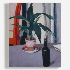 'Aspidistra and Bottle on Table'