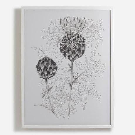 'Meadow Flower'