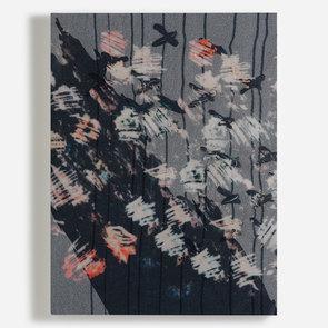 'Scratched Florals'