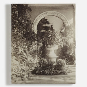 'Winter Garden Antoine photogrphche blatten'
