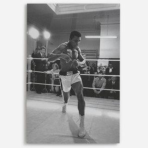 'Ali In Training'