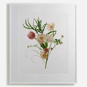 'February Flowers'