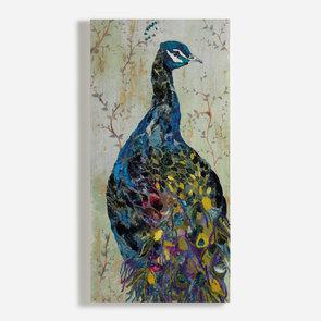 'Proud Peacock'
