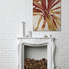 'Tresco Palm'