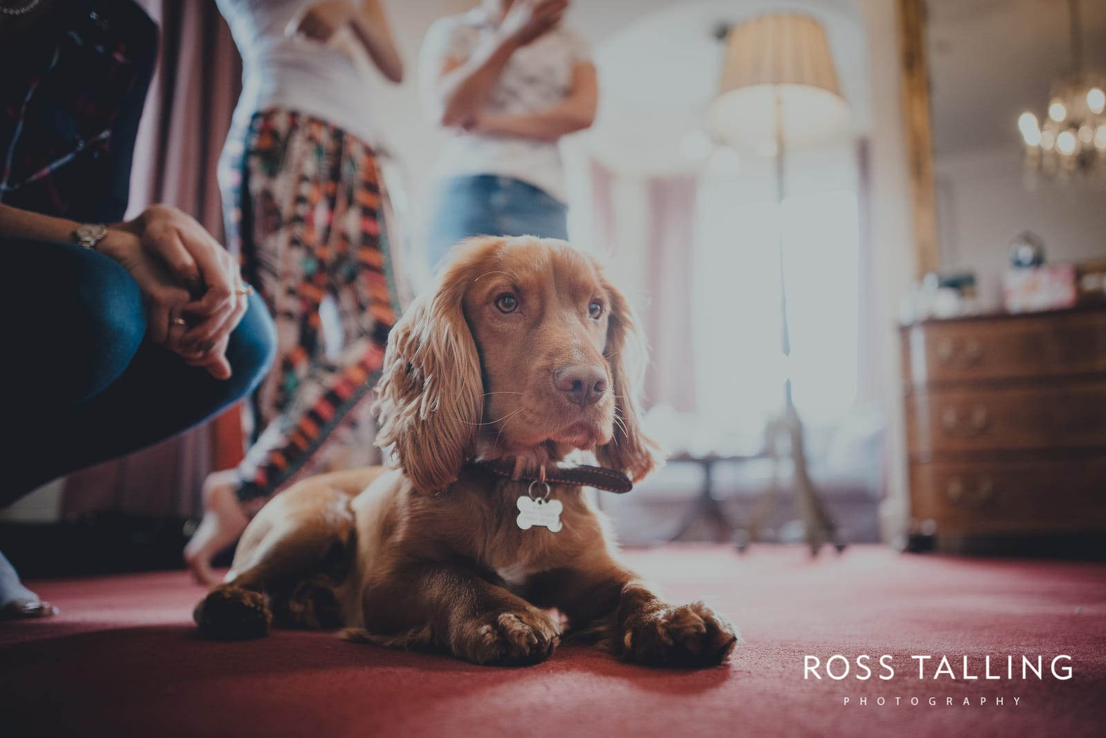 Fowey Hall Wedding Photography Cornwall-2