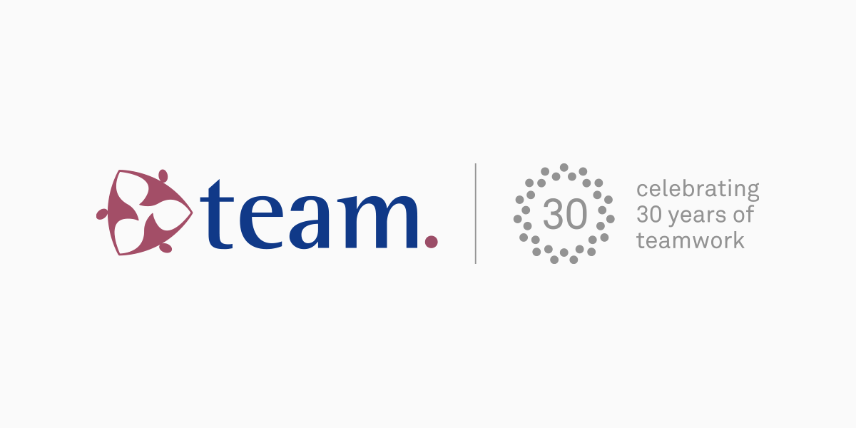 team-consulting-30-years-grey