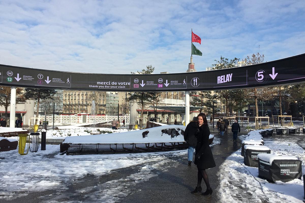 team-consulting-pharmapack-2018-snow
