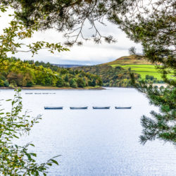 Ladybower Rowing Boats