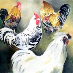painting of cockrels for sale