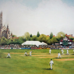 worcestershire countu cricket club print