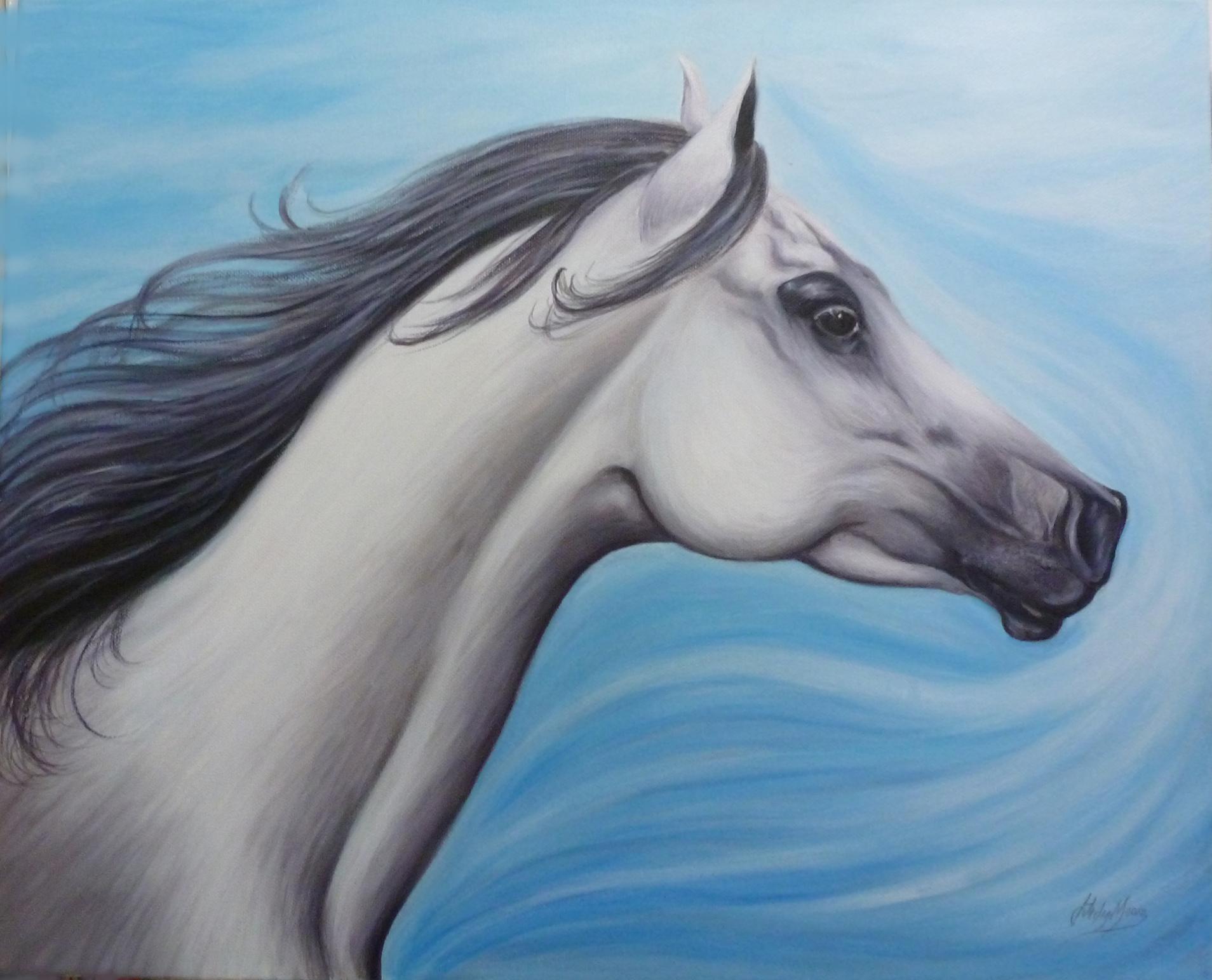Arabian Sapphire Art Rippingham Art
